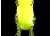 Jackall Kaera Akagaeru Frog