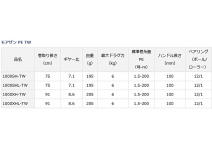Daiwa 19 Morethan PE TW 1000SH-TW