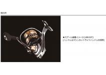 Daiwa SLPW EX LT Spool 2500SS