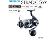 Shimano 20 Stradic SW 8000PG