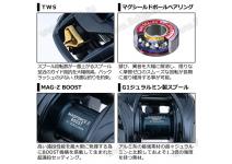 Daiwa 21  STEEZ A TW HLC 7.1R