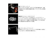 Daiwa 19 Zillion 10.0R-SV TW