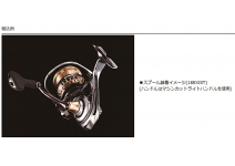 Daiwa SLPW EX LT Spool 1000SS