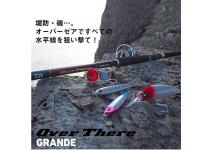 Daiwa 21  Over There  Grande 100MH-3