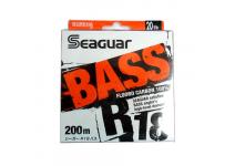 Seaguar R18 Bass 240m