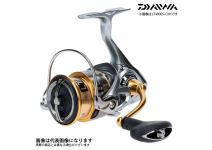 Daiwa Freams 19  LT 4000S-CXH