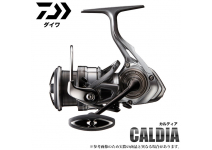 Daiwa Caldia 18 LT2000S